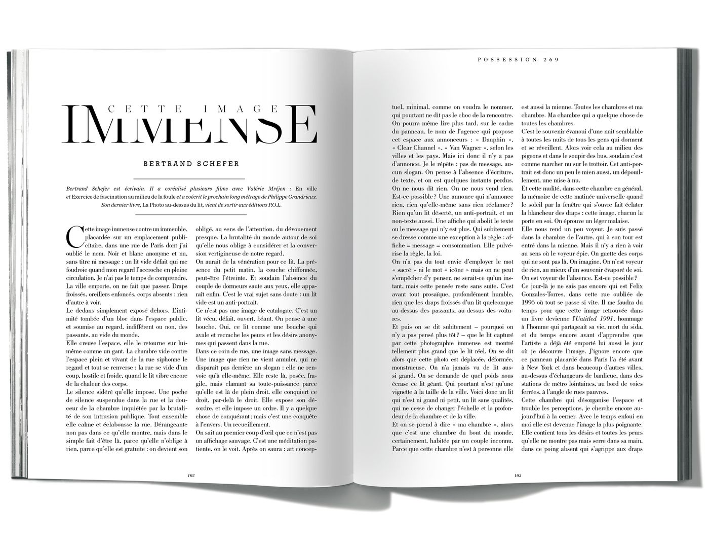 Texte de Bertrand Schefer, Cette Image immense